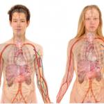 逆流性食道炎を放置したら?症状は悪化し内部出血さらに最悪ガンで死に至ることも